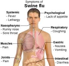 swine=flu-symptoms